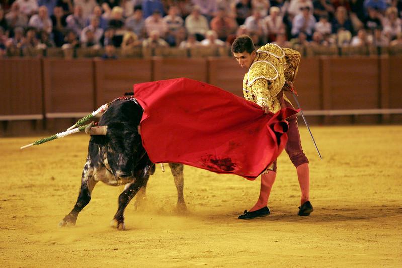 Anibal Ruiz, Spanish bullfighter. Bullfight at Real Maestranza bullring, Seville, Spain, 15 August 2006.