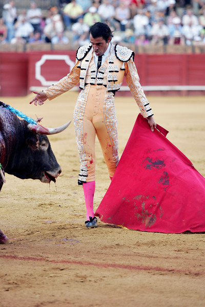 The Spanish bullfighter Uceda Leal after having stabbed the bull. Bullfight at Real Maestranza bullring, Seville, Spain, 15 August 2006.