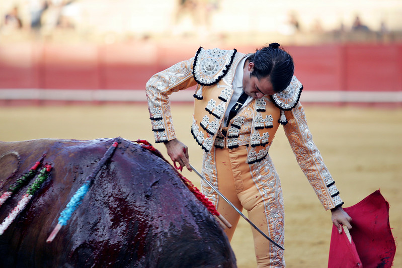 The Spanish bullfighter Uceda Leal. Bullfight at Real Maestranza bullring, Seville, Spain, 15 August 2006.