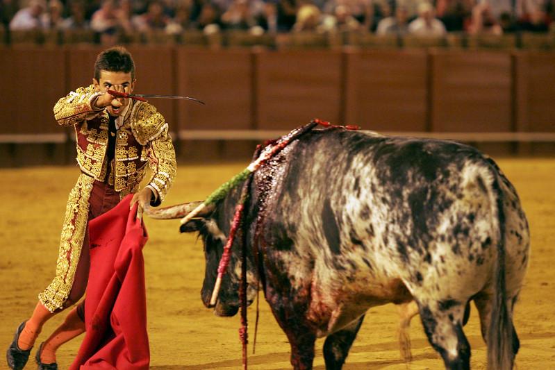 Anibal Ruiz stabbing a bull. Bullfight at Real Maestranza bullring, Seville, Spain, 15 August 2006.