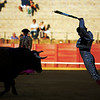 Banderillero in action. Bullfight at Real Maestranza bullring, Seville, Spain, 15 August 2006.