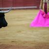 Bull looking at the matador. Bullfight at Real Maestranza bullring, Seville, Spain, 15 August 2006.