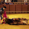 Puntillero killing a bull with the coup of grace. Bullfight at Real Maestranza bullring, Seville, Spain, 15 August 2006.