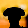 "Silhouette of a bullfighter's head wearing the traditional hat or ""montera"", Real Maestranza bullring, Seville, autonomous community of Andalusia, southern Spain"