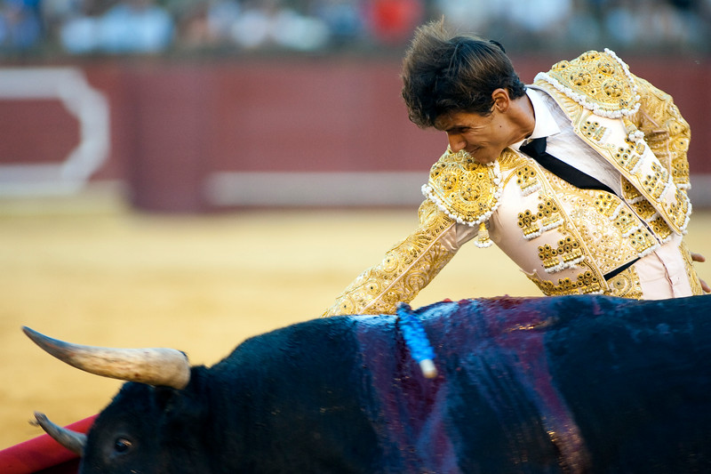 The Spanish bullfighter Cesar Giron, Real Maestranza bullring, Seville, autonomous community of Andalusia, southern Spain