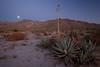 CA-2010-005: Anza Borrego Desert State Park, San Diego County, CA, USA