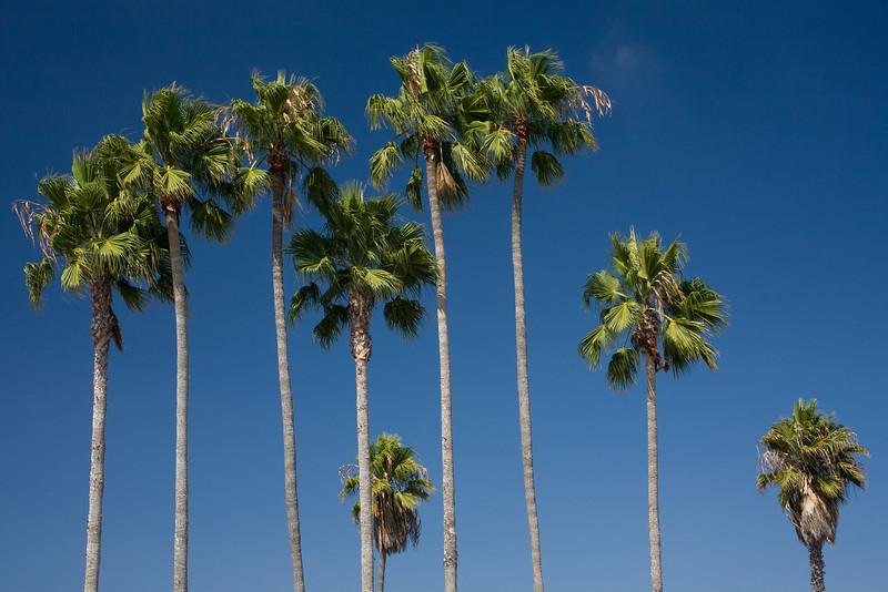 CA-2006-013: San Diego, San Diego County, CA, USA