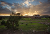 CHH-2013-062: Ejido Colonia Pacheco, Mpo. Casas Grandes, CHH, Mexico