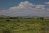 CHH-2013-045: Colonia Mexico, Mpo. Ascension, CHH, Mexico