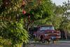 COA-2013-012: El Organo, Mpo. Jimenez, COA, Mexico
