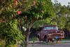 COA-2013-013: El Organo, Mpo. Jimenez, COA, Mexico