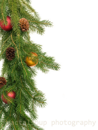 Christmas Decorations on Christmas Tree Isolated on White