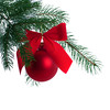 Christmas Tree Decoration on Tree Branch Isolated on White Background