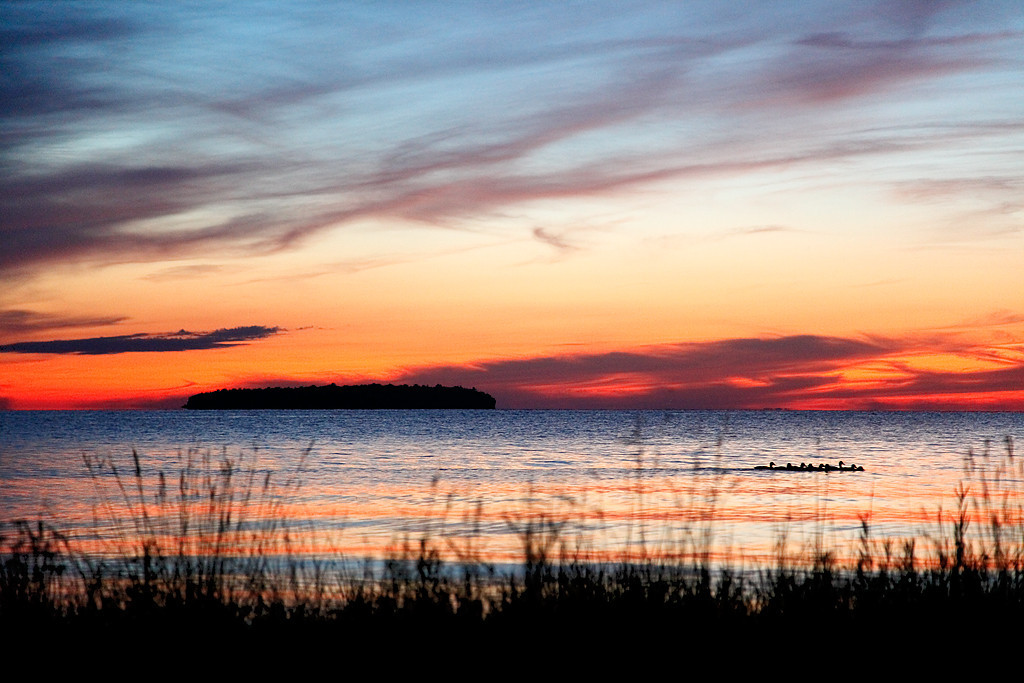 Horseshoe Island & Ducks - Door County (Ephraim, WI)