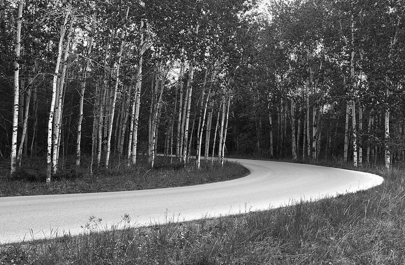 Shore Road - Peninsula State Park (Wisconsin)