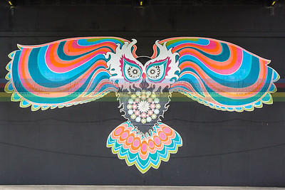 stage-owl-5