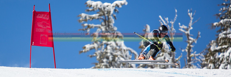 ski_banner-7