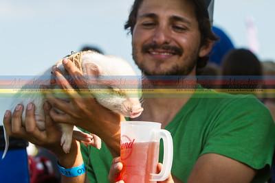 albright_2014_brewfest-26