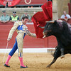 Spectacular image of bullfight