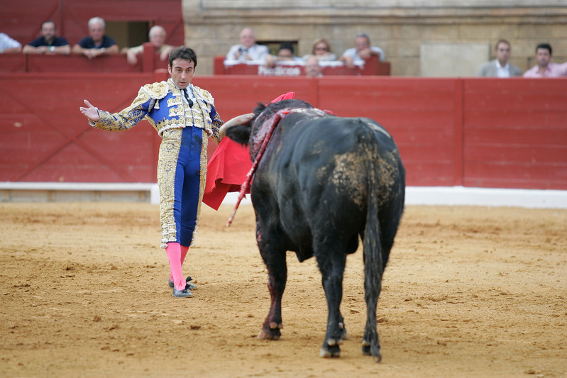 Defiance of the bullfighter in front of the bull