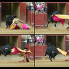 Sequence of a bullfight action