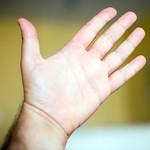 A hand palm