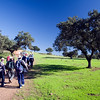 Trekking on a dehesa or holm oak cleared forest, town of Sanlucar la Mayor, province of Seville, Andalusia, Spain