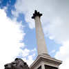 Column and lion, Trafalgar Square, London, England, United Kingdom