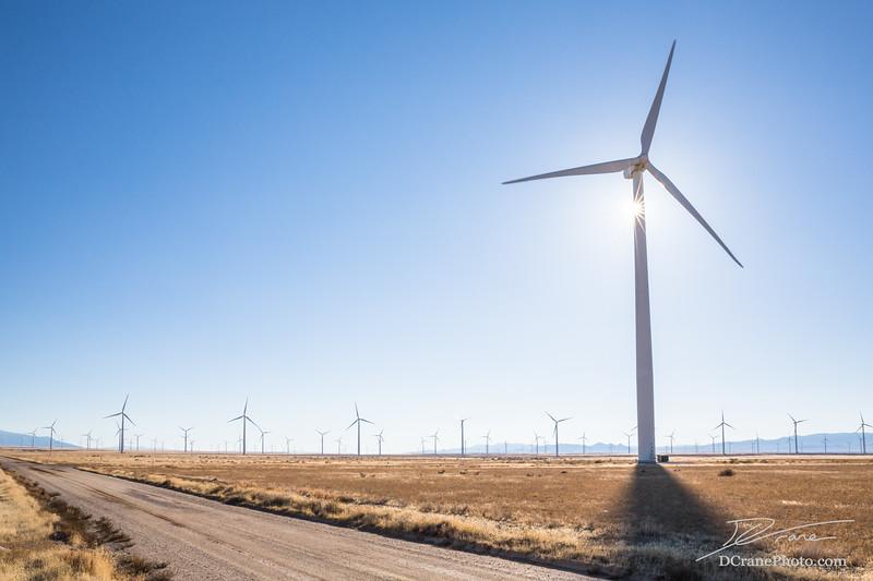 Dirt road through wind farm with sunburst