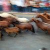 "Motion blurred image of the ""saca de las yeguas"" festival, town of Almonte, province of Huelva, Andalusia, Spain. Dating back to 1504, every 26th of June, the ""yegüerizos"" (cowboys or riders who look after the herds) gather and take the wild mares and colts out of Doñana marshland, where they have been freely grazing in the winter, and lead the ""tropas"" (herds) to the town of Almonte."
