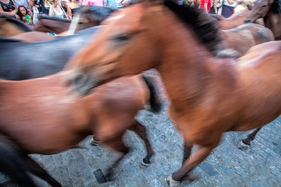 """""""Saca de las yeguas"""" festival, town of Almonte, province of Huelva, Andalusia, Spain. Dating back to 1504, every 26th of June, the """"yegüerizos"""" (cowboys or riders who look after the herds) gather and take the wild mares and colts out of Doñana marshland, where they have been freely grazing in the winter, and lead the """"tropas"""" (herds) to the town of Almonte."""