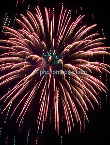 Pink and Purple Fireworks