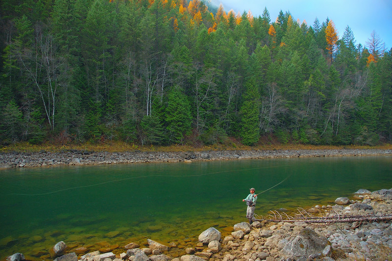 Cast Away.  South Fork of the Flathead River.