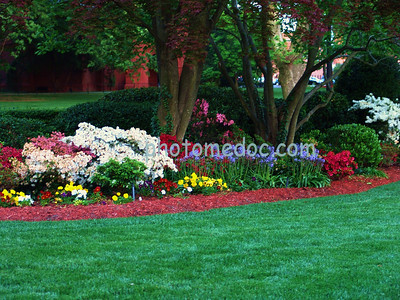 Hampton University Flower Bed