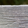 Closeup of a Frost Covered Board