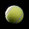 Dramatically shaded Tennis Ball on Black Background