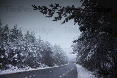 Winter road in England, dual carriageway, empty and free from traffic, snow in trees, road clear of snow
