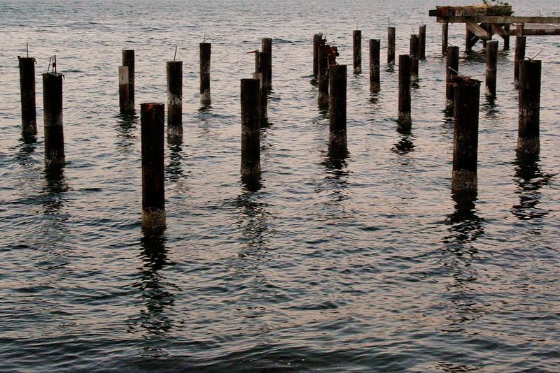 Abandoned Dock Pilings; Langley, Washington