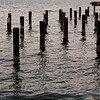 Abandoned Dock Pilings; Langley, Washington
