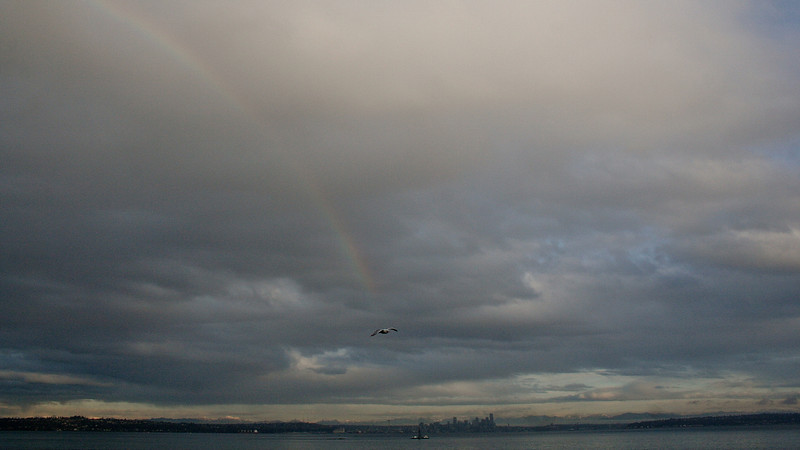 Seattle Cityscape with Rainbow & Gull, from Bainbridge Island Ferry
