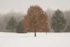 IL-2008-022: Lincoln, Logan County, IL, USA