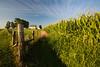 IL-2006-016: , Logan County, IL, USA