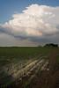 IL-2008-034: , Logan County, IL, USA