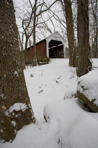 IN-2008-021: Turkey Run State Park, Parke County, IN, USA