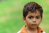 Four year old Aboriginal boy on green background