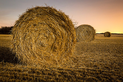 Hay Bales at Night