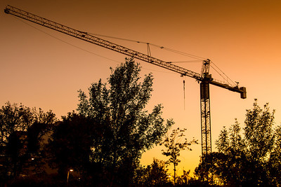 Crane at Sunset
