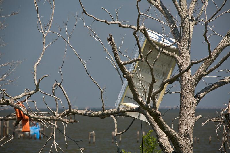 LA-2007-055: Saint Catherine's Island, Orleans Parish, LA, USA