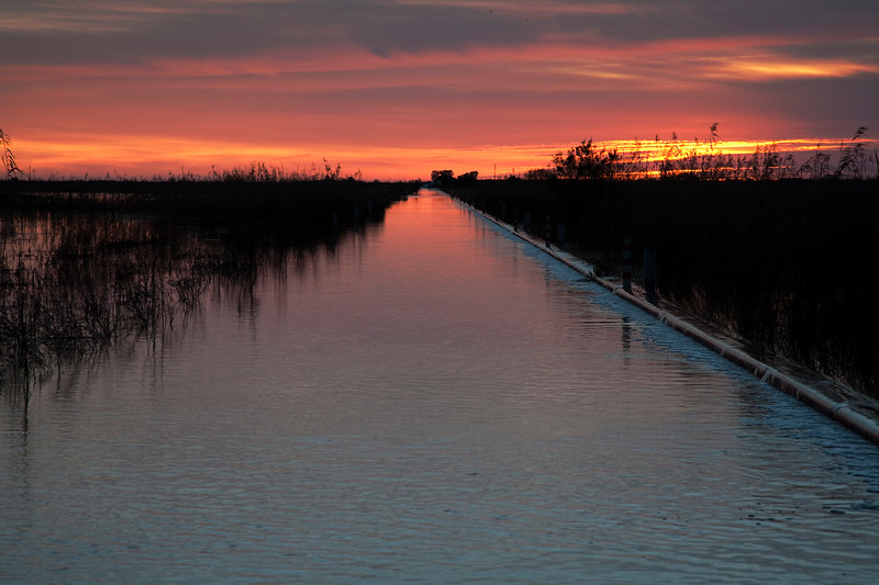 Flooded road in Doñana marshland national park area, town of Isla Mayor, province of Seville, autonomous community of Andalusia, southwestern Spain