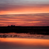 After sunset by Doñana marshland, town of Isla Mayor, province of Seville, autonomous community of Andalusia, southwestern Spain